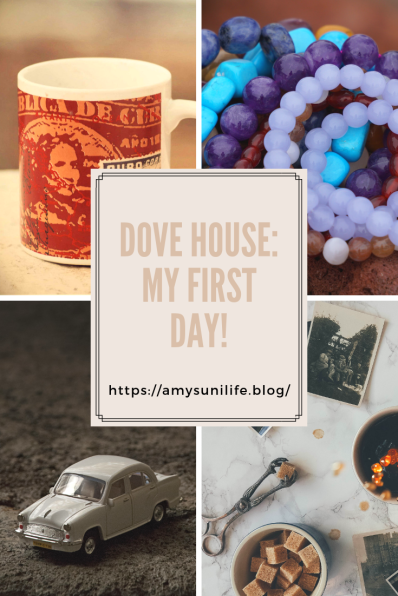 Dove House_ My First Day! _')